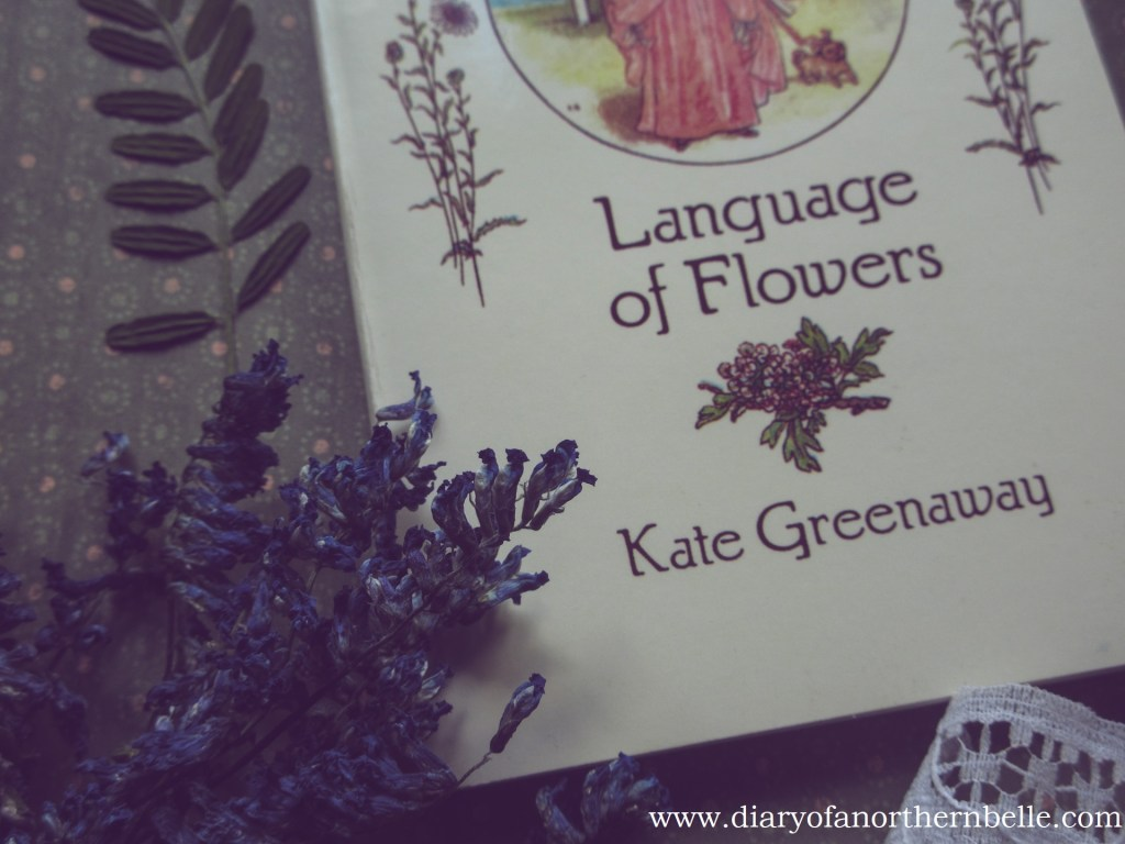 close-up Language of flowers dictionary and dried cow vetch bouquet