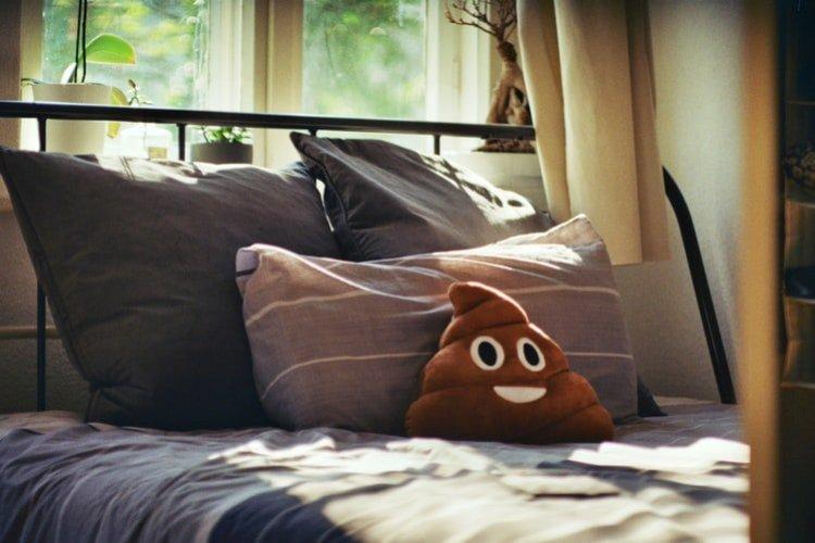 poop emoji pillow on bed