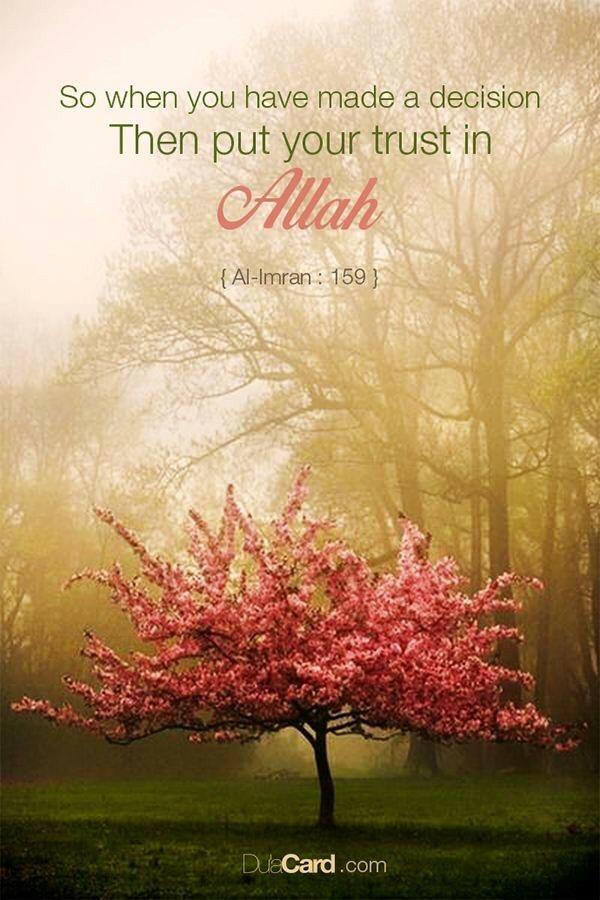 Al Imran 159 : imran, Quran, Al-Imran, Diary, Revert, Muslimah