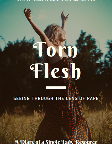 Torn Flesh by Esther Bamiloshin - Diary of a Single Lady