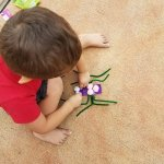 build your own spider craft