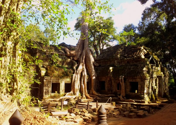 Cambodia diaries: The mystique of Ta Prohm