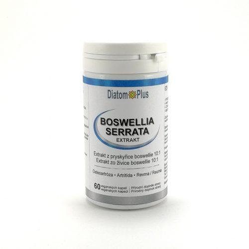 Boswellia Serrata Extrakt DiatomPlus Kapsule 60 ks