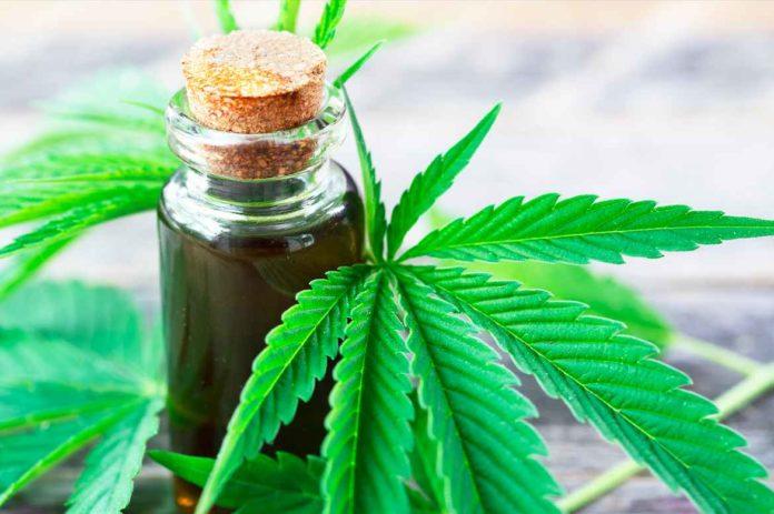 """El proyecto quiere reglamentar """"la investigación, la producción, la comercialización, la autoproducción y la industrialización"""" del cannabis medicinal."""