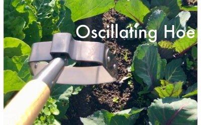 Oscillating Hoe
