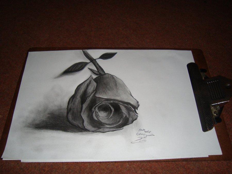 ROSA 3D 2 por DanteCallisayaSaavedra  Dibujando