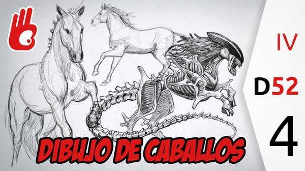 Dibujo de caballos, estudios del mundo natural. Desafío 52