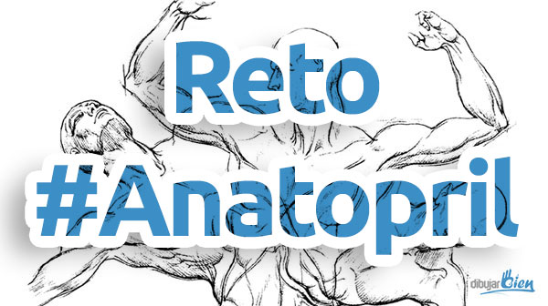 Anatopril, dibujo de anatomía en Abril - Dibujar Bien