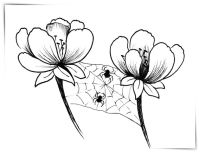 Imagenes Hermosas Para Colorear Flores Hermosas Para
