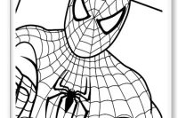 Spiderman Para Colorear Facil Spiderman Dibujos En Espaol