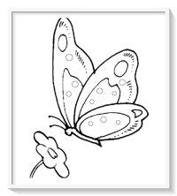 imagenes de mariposas para colorear bonitas  Biblioteca ...