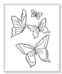 mariposas para colorear grandes y bonitas  Biblioteca de