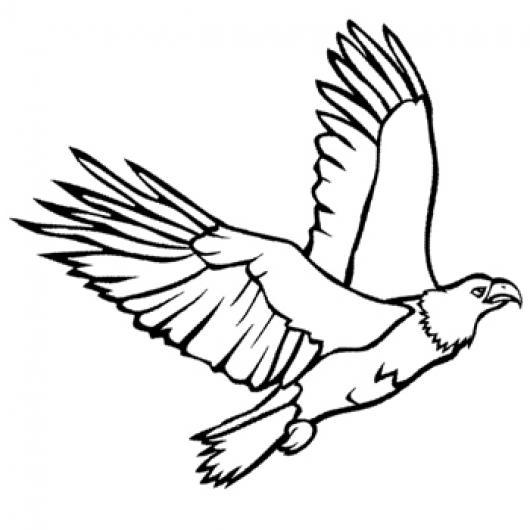 Aguila Dibujo Volando