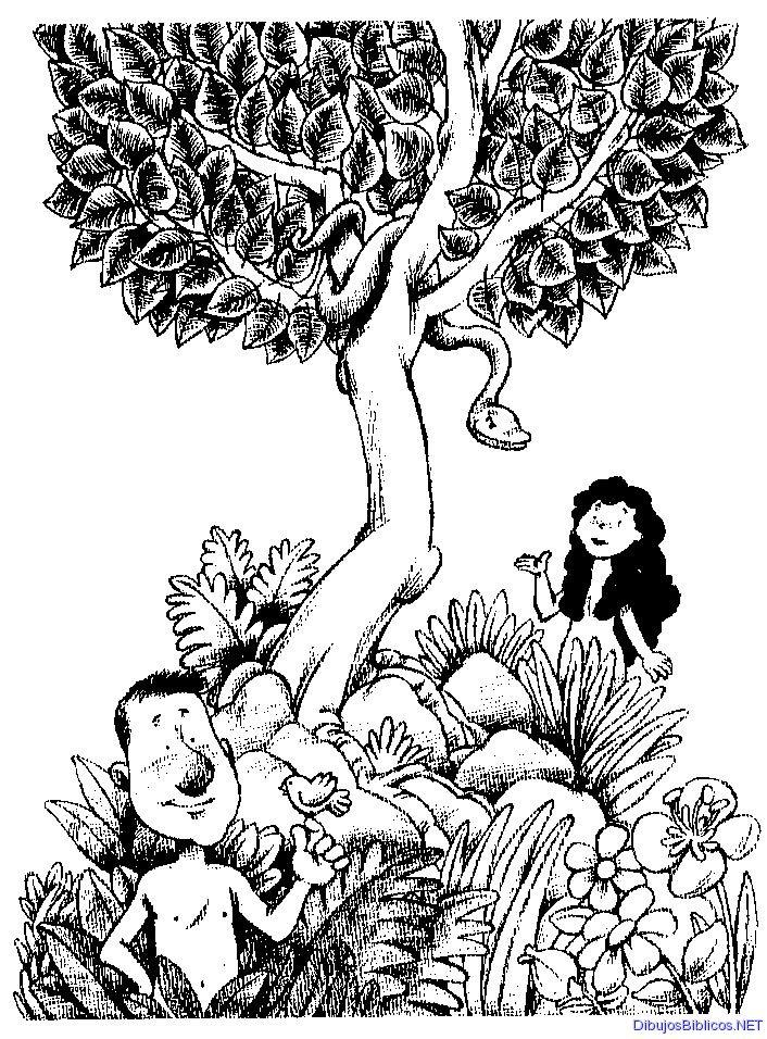 Adán y Eva para colorear | Dibujos para colorear