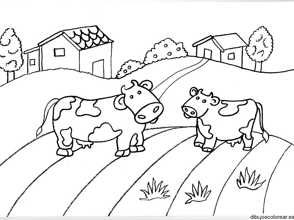Dibujo de dos vacas en un camino
