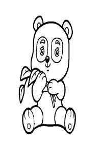 Osos pandas para colorear  Dibujos para colorear
