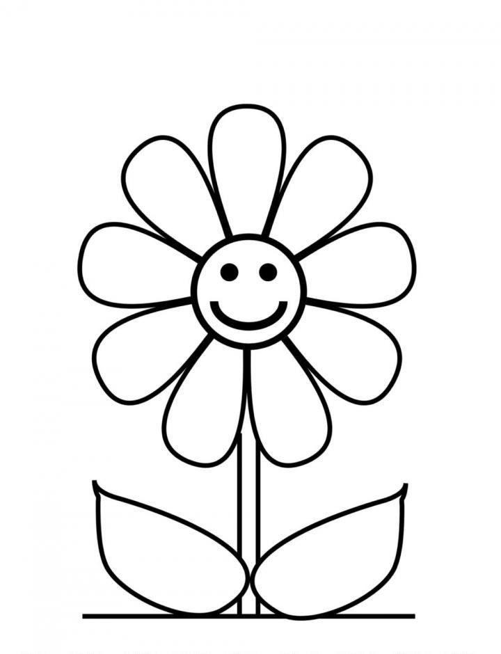 imagen de flor para colorear - Akba.greenw.co
