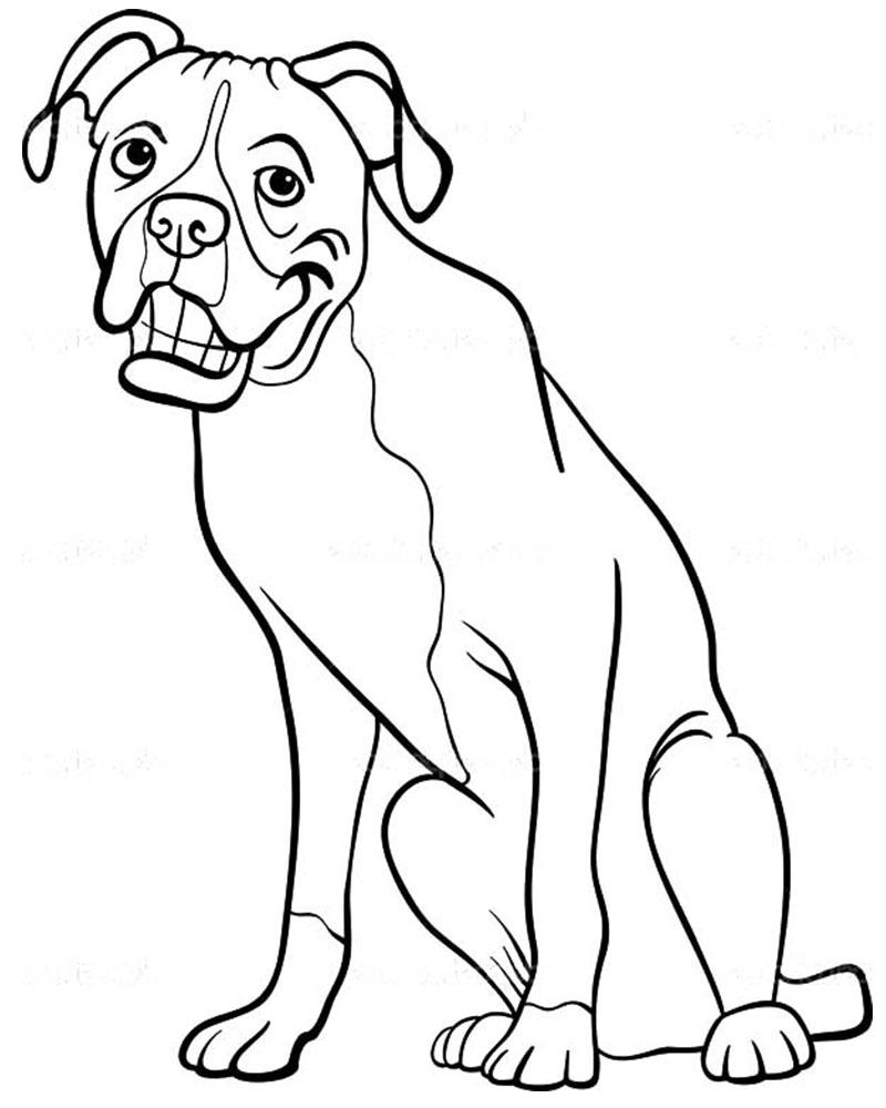 dibujos de perros boxer para pintar