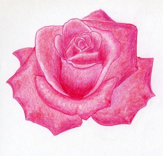 Como Dibujar Una Rosa Facil Y Bonita