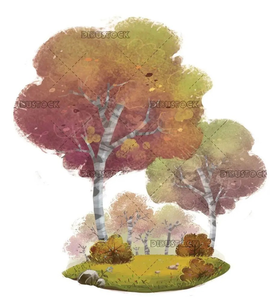 trees in the forest with isolated background