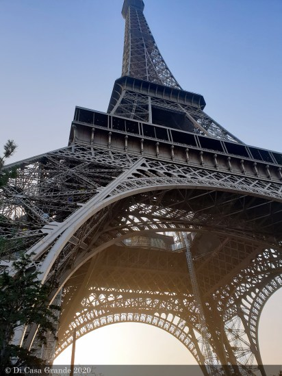 PARIS-ANIMAL-SHOW-TICA-2020 (1 sur 27)