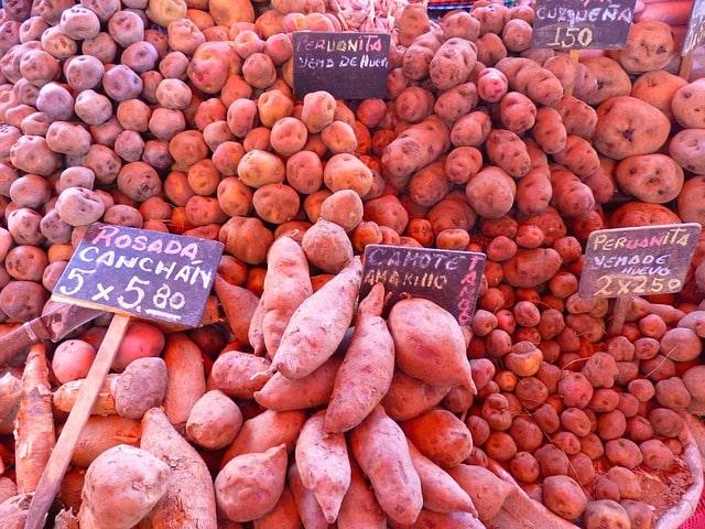 verdura e legume da estação