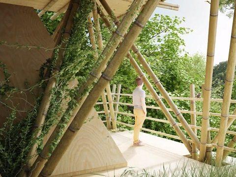 hotel de bambu 5