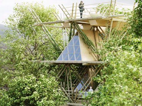 hotel de bambu 6