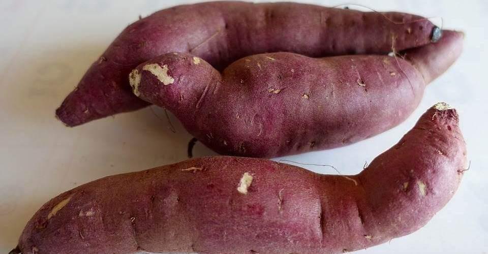 Comer batata doce