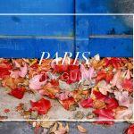 Kinh nghiệm khám phá Paris – Pháp như người bản địa