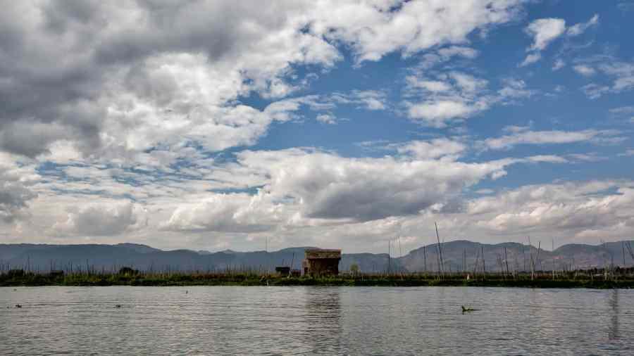 Paysages du lac : les jardins flottants fixés par de bambous
