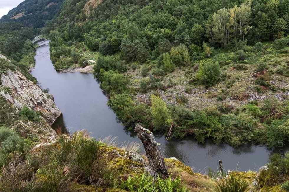 Gorges de la Loire en amont du Cussac