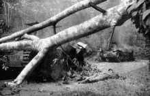 18th-January-1942-Japanese-tanks