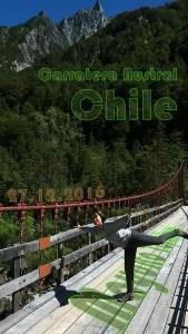 מיוקו טושיקוני צ'ילה