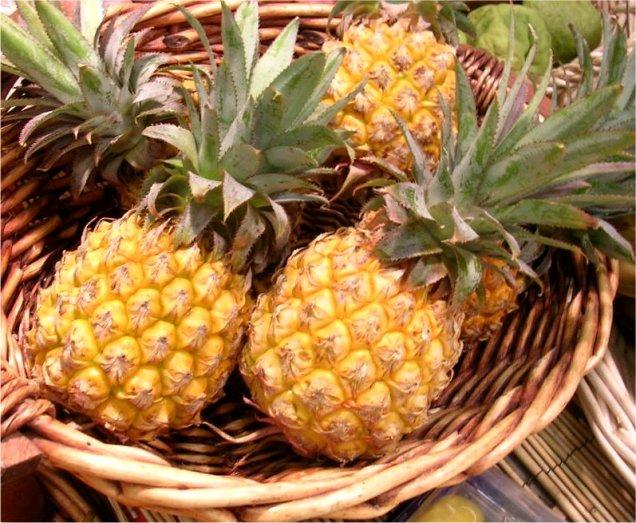 Risultati immagini per ananas