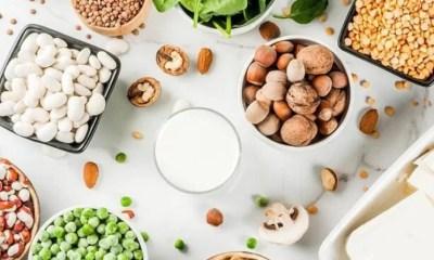 Protéine végétale et sport, une bonne idée