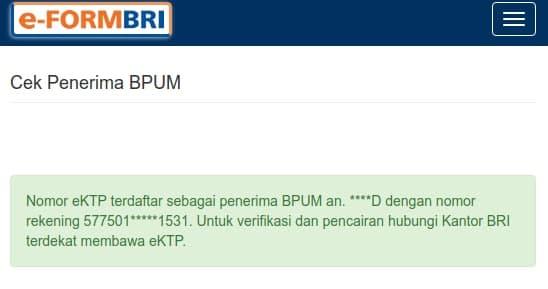 Contoh Hasil Cek e-Form BPUM Bank BRI