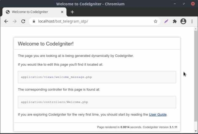 Tampilan Standar CI3 - Bot Telegram OTP