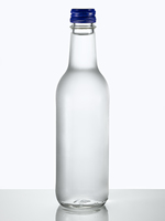 bottle meaning in the