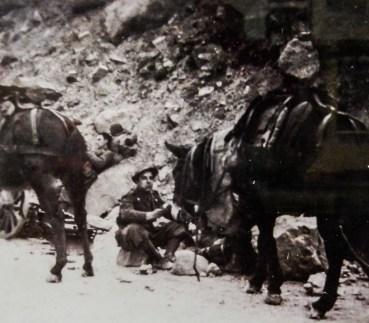 L'artigliere alpino Alessandro Vinceti Mareri in guerra, 1941