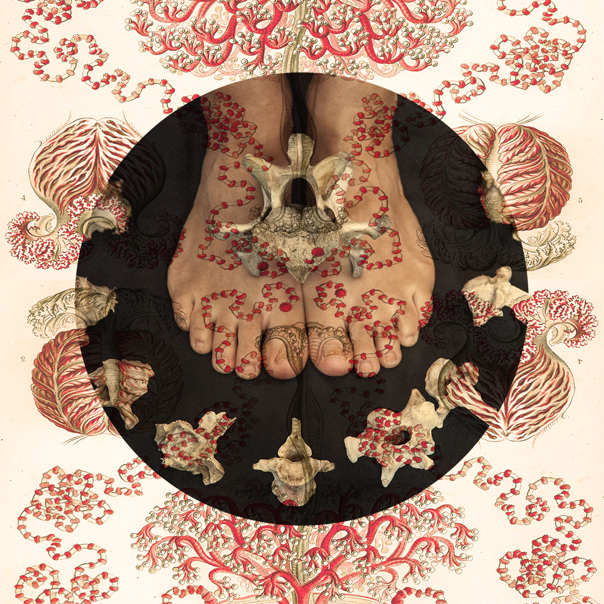 "Fotografia de la artista Tatiana Parcero, transferida en madera ""Kiri"". Medidas: 20x20 cm."