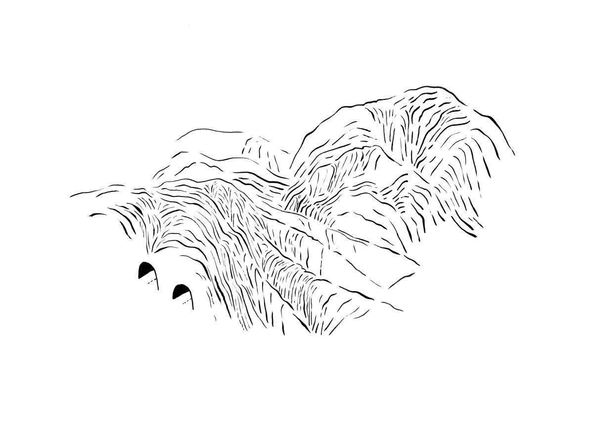detalle de obra tinta china sobre papel