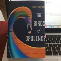 The Birds of Opulence