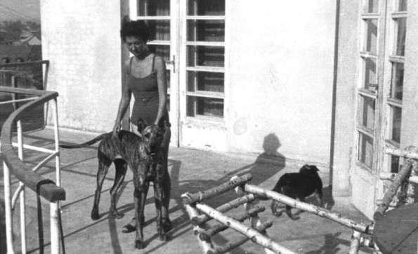 Ruth Irene Kalder-Majola