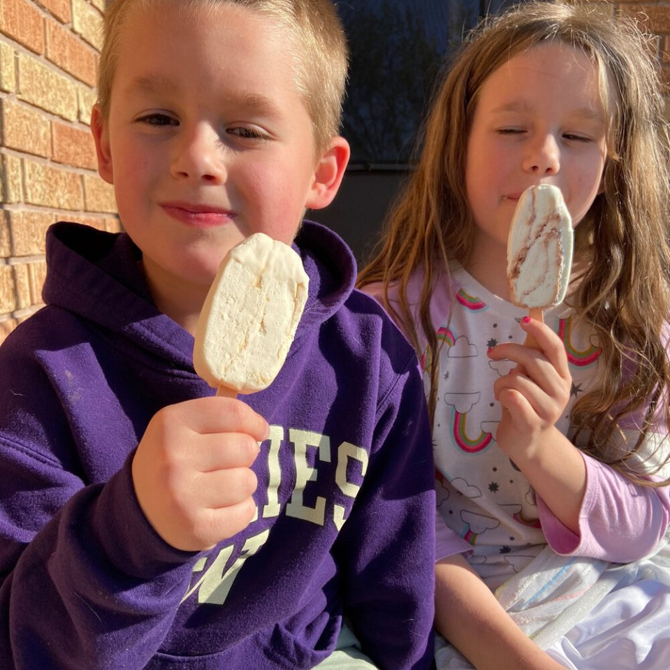 Breyers CarbSmart: Not just for people on a low-carb diet. Even the kids are stealing our stash!   Didn't I Just Feed You2.jpg