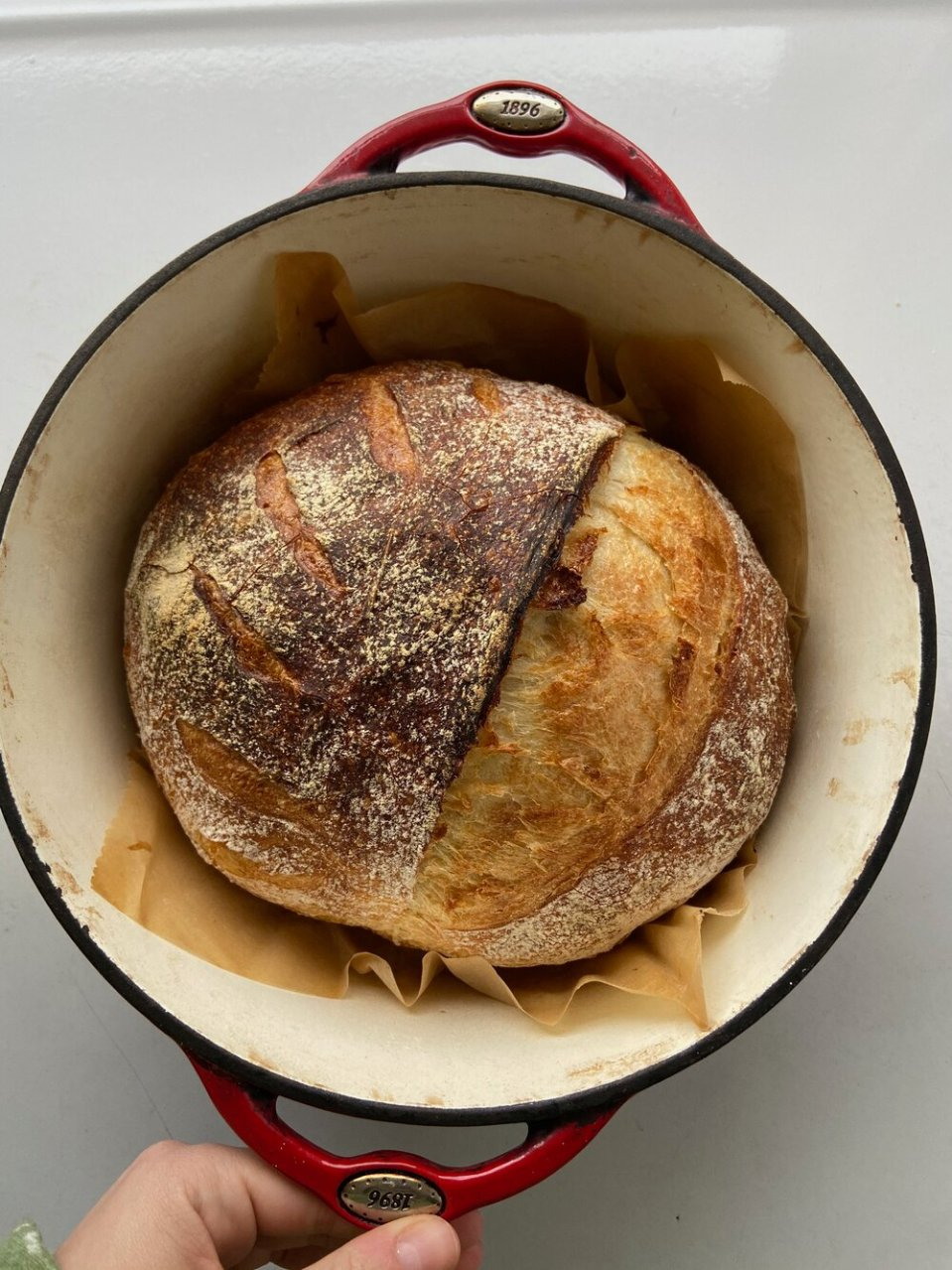The Busy Parents Guide to Sourdough Bread with Cathy Lloyd Burns.jpg