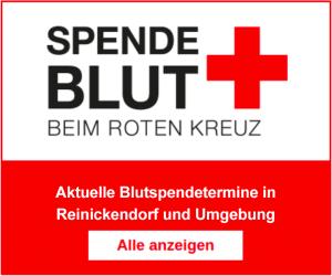 Termine der Blutspenden in Reinickendorf