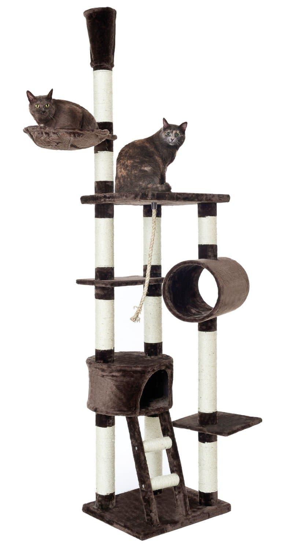 Kratzbaum Für Schwere Katzen Wissenswertes Top 5