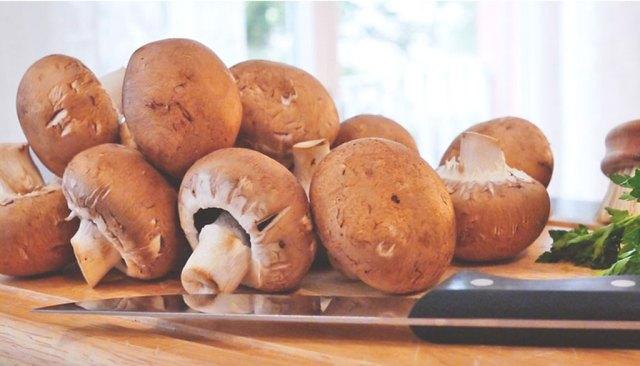 Rezept Sacchettini mit Pilzfüllung in Champignonsoße Champignons