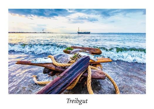 Strandgut, Food in der Natur, Treibgut.